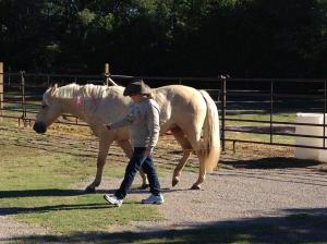 Laurie Cox with her mare, Holly