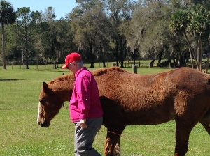 Kathy Hunter with Whinney