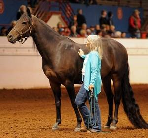 Ruella and Pocket at the American Horsewoman's Challenge in Guthrie, Oklahoma