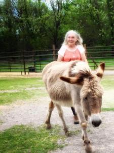 Ruella Yates working with Jenny the donkey - many students had the opportunity to work with a donkey for the first time!