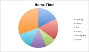 Sample Horse Time Pie Chart